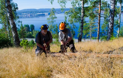 PeO Moberg och Anders Persson på röjningsuppdrag i Järved/Salmostaden-området.